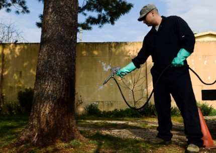 This is an image of a pest exterminator - Pleasanton, CA